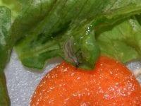 Dræbersnegle, foto: Haveselskabet
