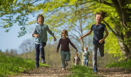 Naturaktiviteter i børnehøjde: Tag ud i naturen i sommerferien