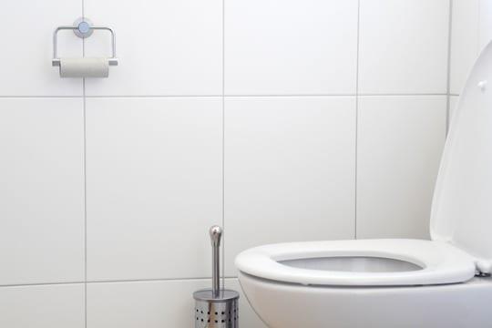 International toiletdag - Værn om din toiletkumme