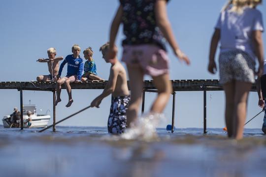 Se listen: Her finder du Danmarks reneste badevand med Blå Flag og Badepunkt
