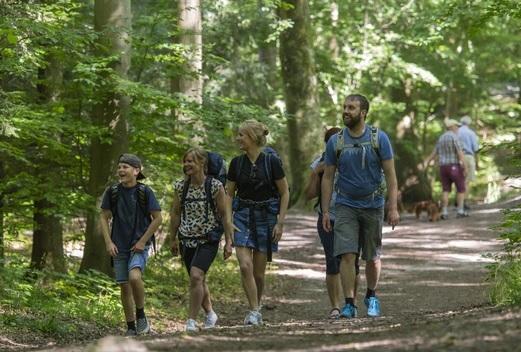 Ny Gallup-undersøgelse: Danskerne vælter ud i naturen