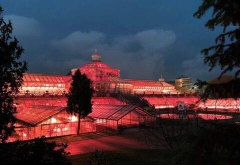 Gratis: Nat i Botanisk Have for hele familien